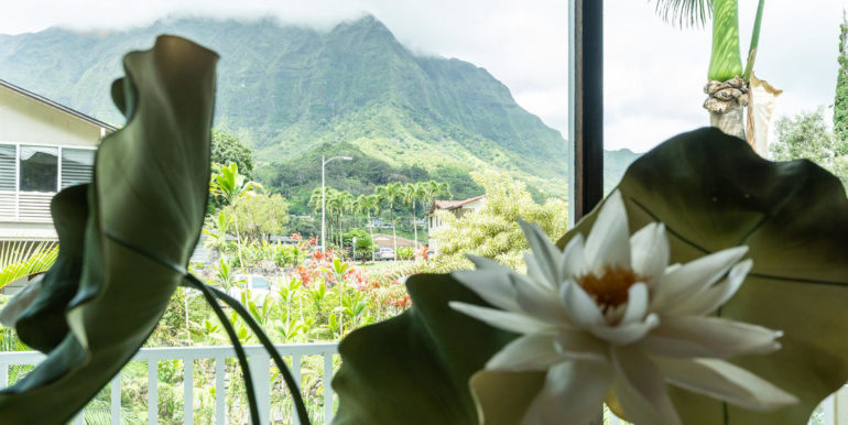 1202 Kelewina St Kailua HI-020-12-View-MLS_Size