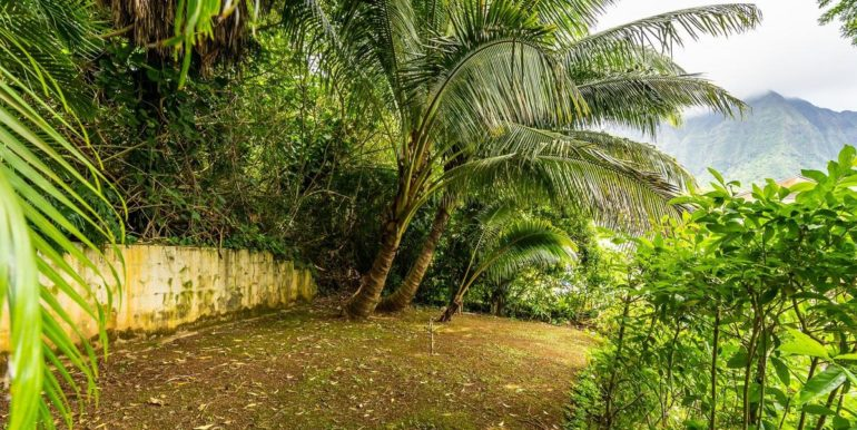 1202 Kelewina St Kailua HI-045-36-Back Yard-MLS_Size