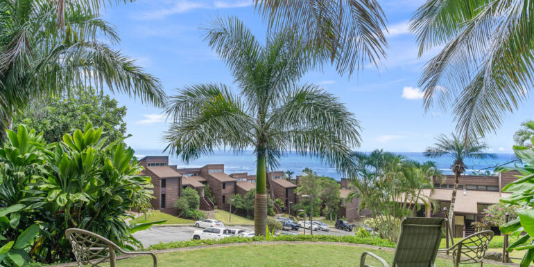 51636 Kamehameha Hwy 4422-017-014-View-MLS_Size