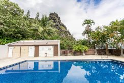 51636 Kamehameha Hwy 422-large-028-021-Community Pool-1500x1000-72dpi